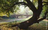 centralpark1web