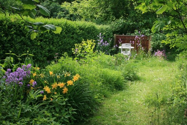 Wild_garden3